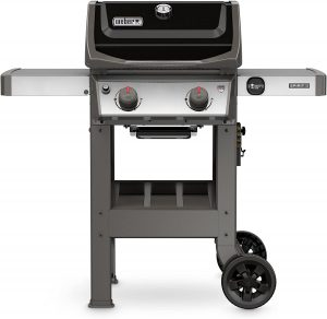 best 2 burner gas grills 43